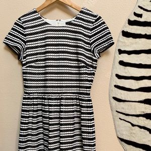 ANN TAYLOR SS  lined black and white dress